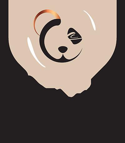 CC Eye